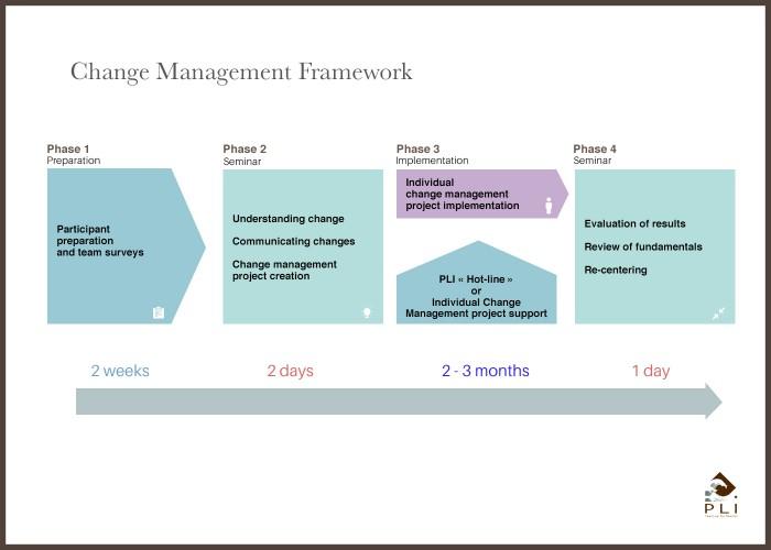 Change Management Framework Sans Cadre