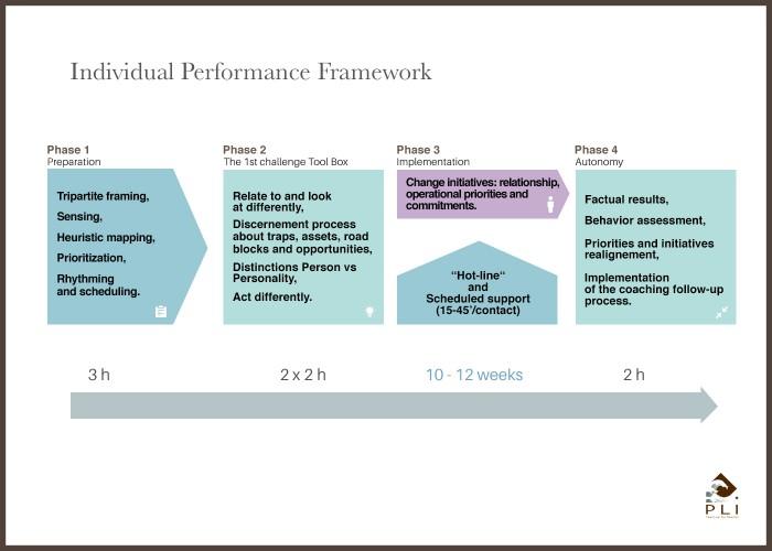 Individual Performance Framework Sans Cadre