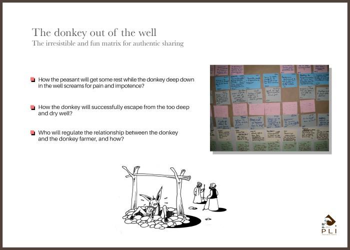 The donkey Sans Cadre