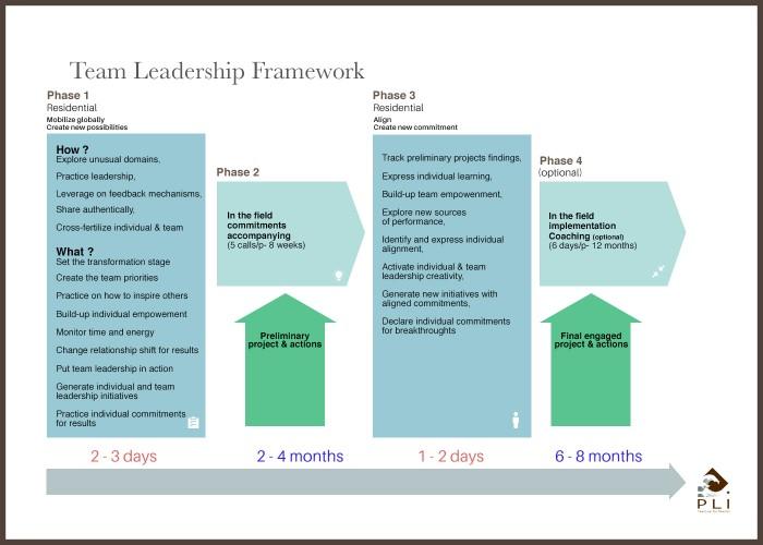 team leadership framework sans cadre