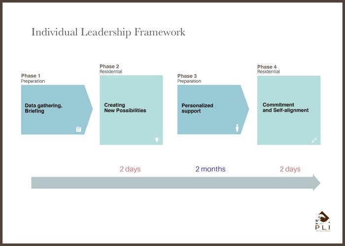 Individual Leadership Framework sans cadre
