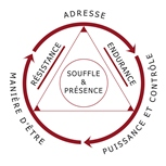 Schema pyramidal