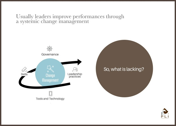 Usually leaders improve performances through a systemic change management Sans Cadre